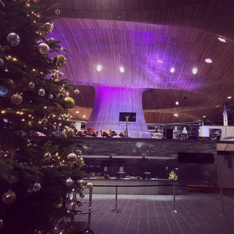 Wales Senedd displaying purple lights with Christmas tree in foreground